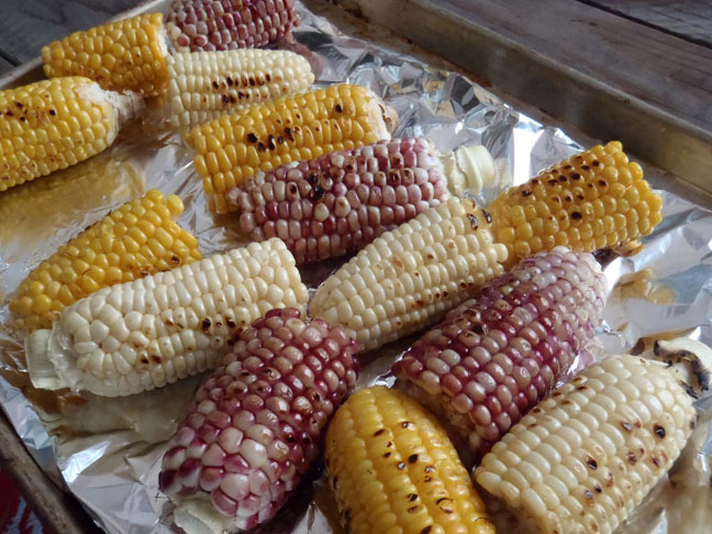 Grilled Corn cobbs