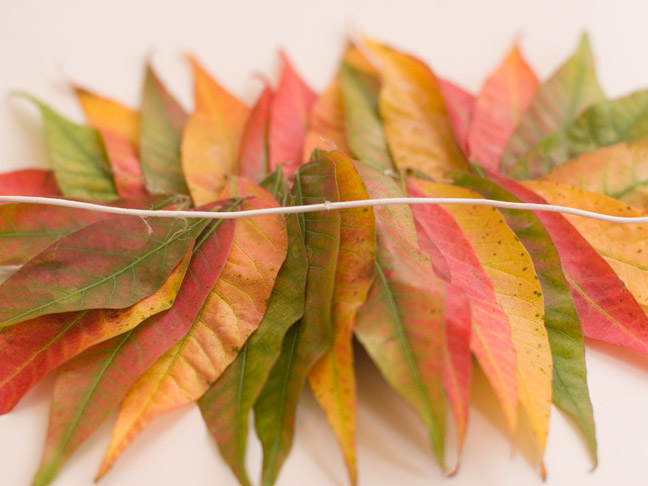 DIY: Fall Leaf Masks