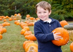 5 Fantastic Fall Family Traditions
