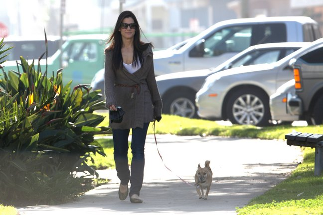 Sandra Bullock walking her dog Ruby
