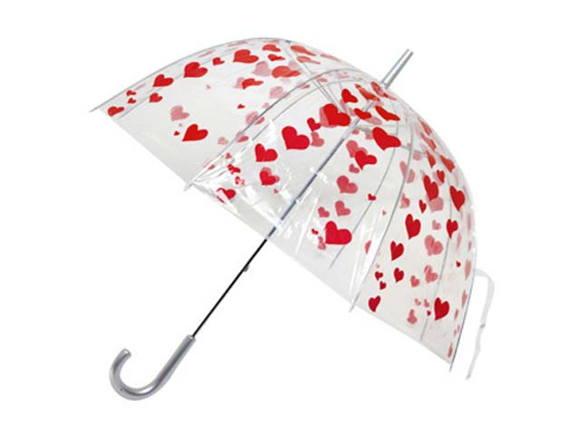 file_161350_0_110329-umbrella