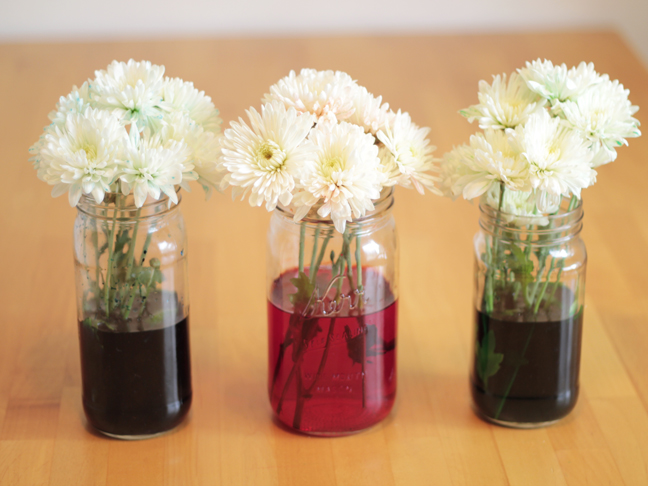 Diy Colored Flowers