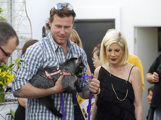 tori spelling black dress, dean mcdermott plaid shirt, goat