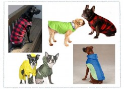 Dog Coats-Be Prepared For Winter