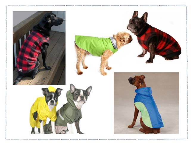file_168854_0_110920-dogcoats