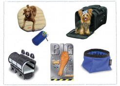 "5 ""Must Have"" Items to make Traveling with your Dog Easier"
