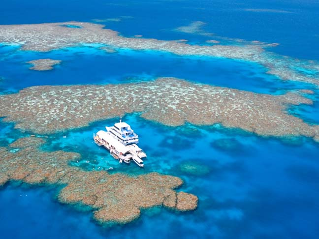 One Of The World S Natural Wonders The Great Barrier Reef