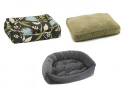 3 Stylish Pet Beds for You!