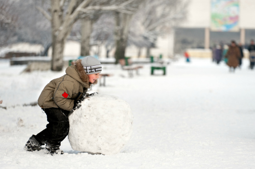 rolling the base of the snowman