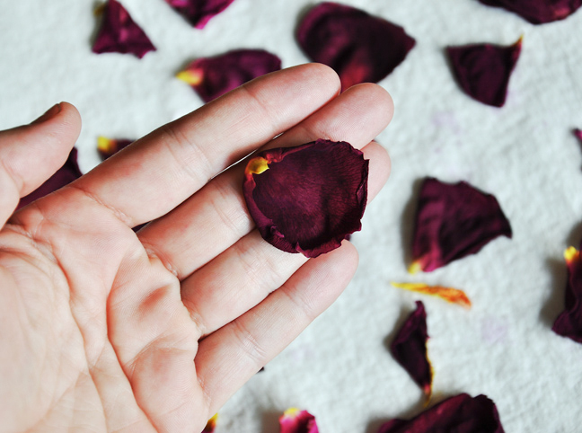 dry-rose-petals-tutorial-6