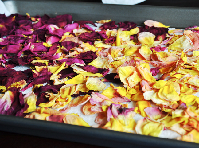 dry-rose-petals-tutorial-7