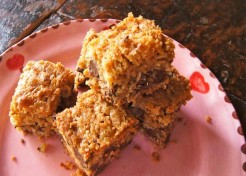 Gluten Free Chocolate Chip Oat Almond Bars