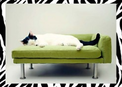 Stylish Modern Pet Lounger