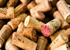 Navigating A Restaurant Wine List