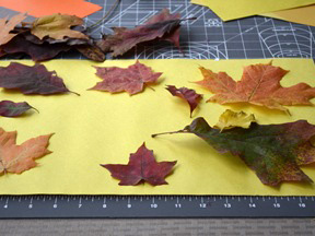 Fall Leaf Placemat - Supplies
