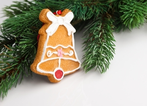 Cookie Xmas Ornament