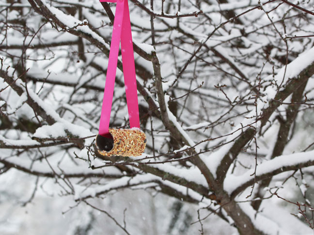 Bird Feeder Craft for Kids - Step 5