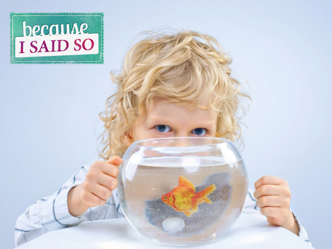 Parenting Blog - Goldfish