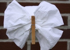 DIY: Toilet Tissue Origami Crafts