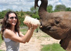 Kristin Davis' Diary: The International March for Elephants