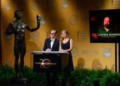 2013 SAG (Screen Actors Guild) Awards Nominations Announced