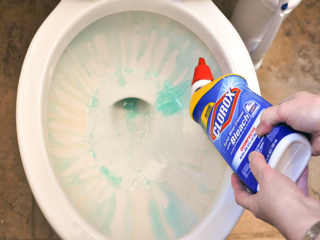 Christina On The Clorox Toilet Bowl Cleaner With Bleach - Bathroom cleaner person