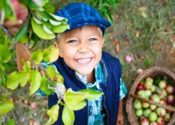 Plan Your Fall Family Apple Harvest Getaway