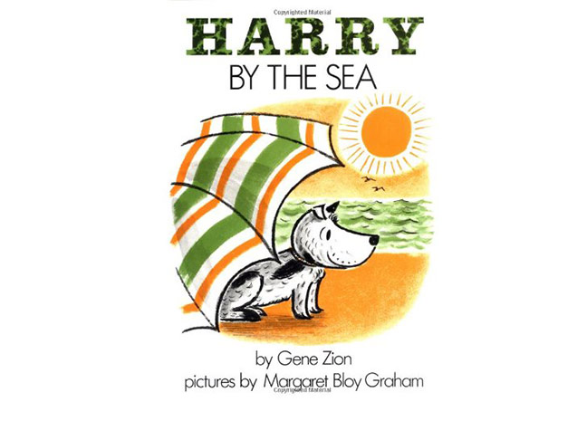 harry-by-the-sea