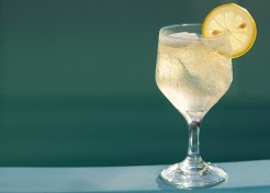 """The Juliet"" White Wine Spritzer Recipe"