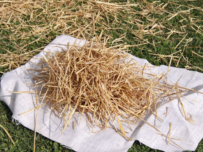 making the scarecrow head