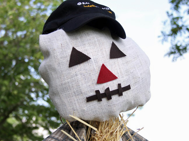 closeup of scarecrow's face