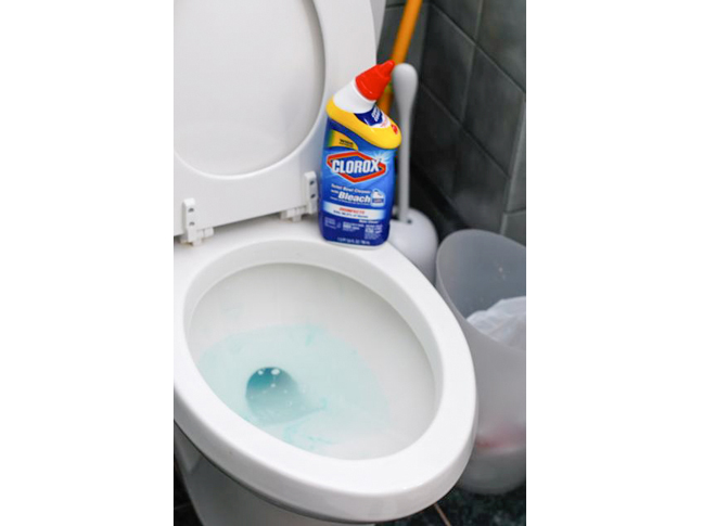 Kelsey on Clorox Toilet Bowl Cleaner with Bleach