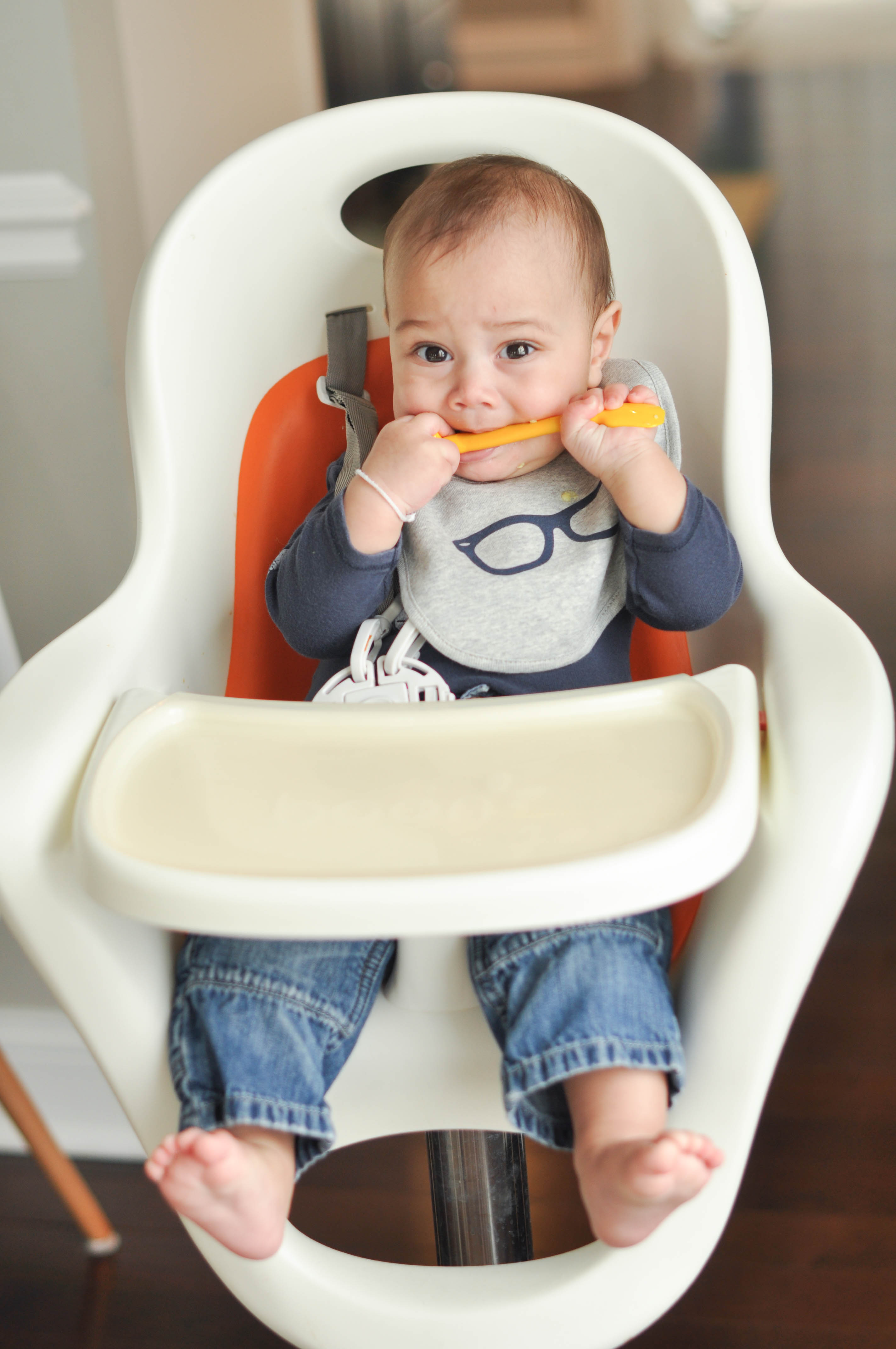 Bright baby feeding necessities plus five fun first foods
