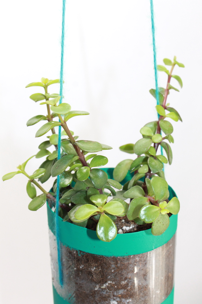 Small Water Garden Needs No Electricity Just Place Pots: How To Make Hanging Planters From Recycled Water Bottles
