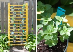 How to DIY a Vertical Herb Garden for Under $100