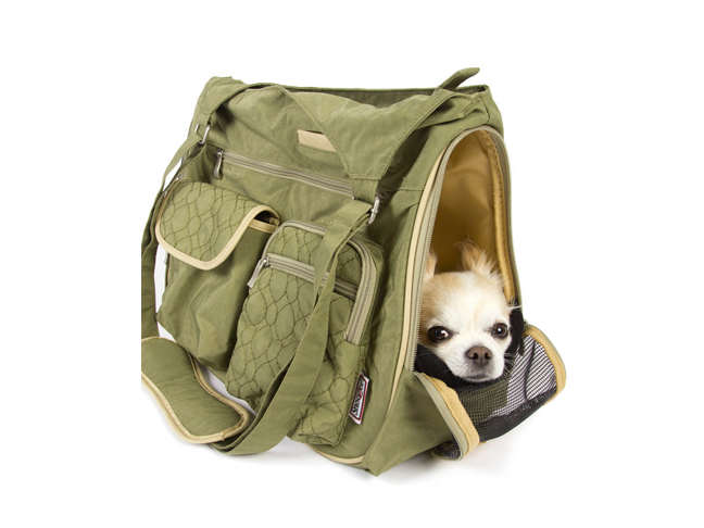best_dog_carriers5