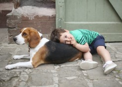 The 5 Best Breeds of Dogs for Families with Small Children
