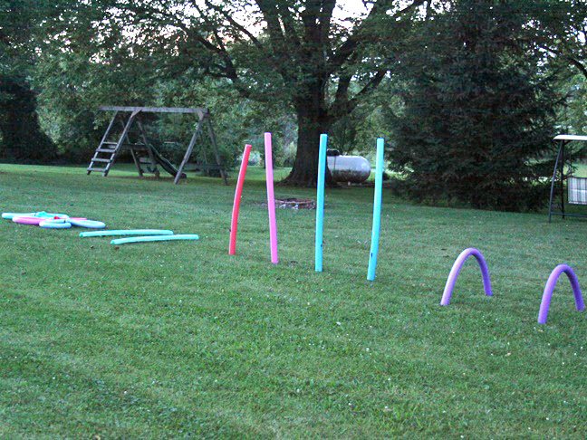 Pool Noodle Crafts: 3 Creative Ideas for Repurposing ...