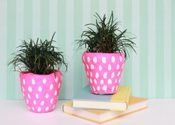 DIY Clay Pot: Strawberry Planters