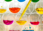 Easy Science Experiment: Exploring Color Theory with Bubble Wrap