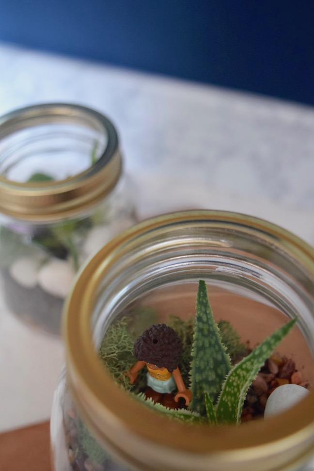 DIY Kid-Friendly Mason Jar Terrariums