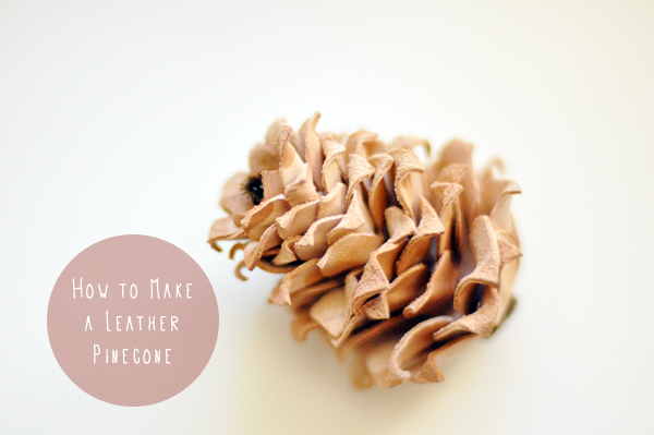 Leather Pine Cone