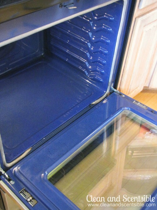 Safely Clean Your Oven Without Chemicals