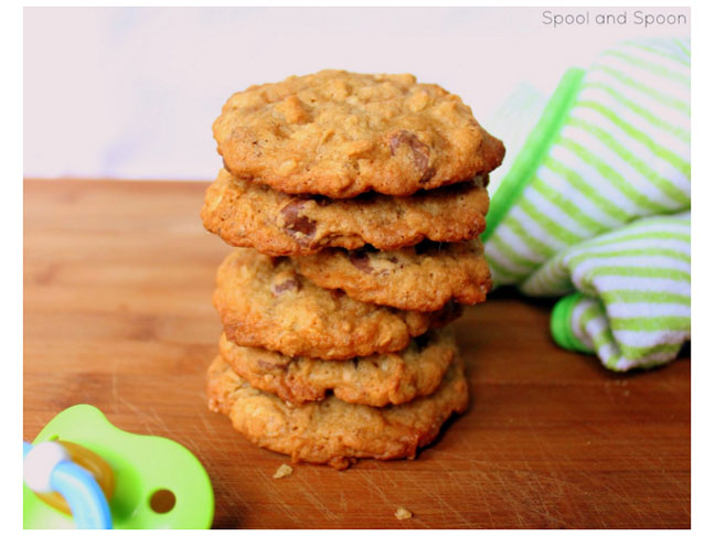 Lactation Cookie Recipes 15 Delicious Ideas For -7311