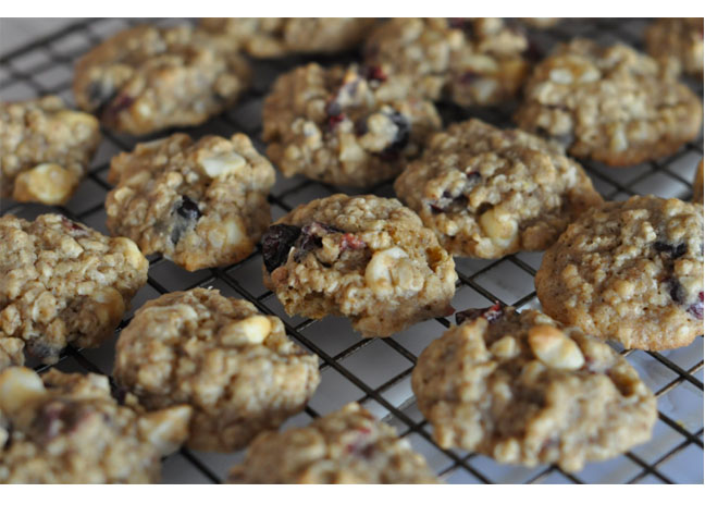 Lactation Cookie Recipes 15 Delicious Ideas For -3581