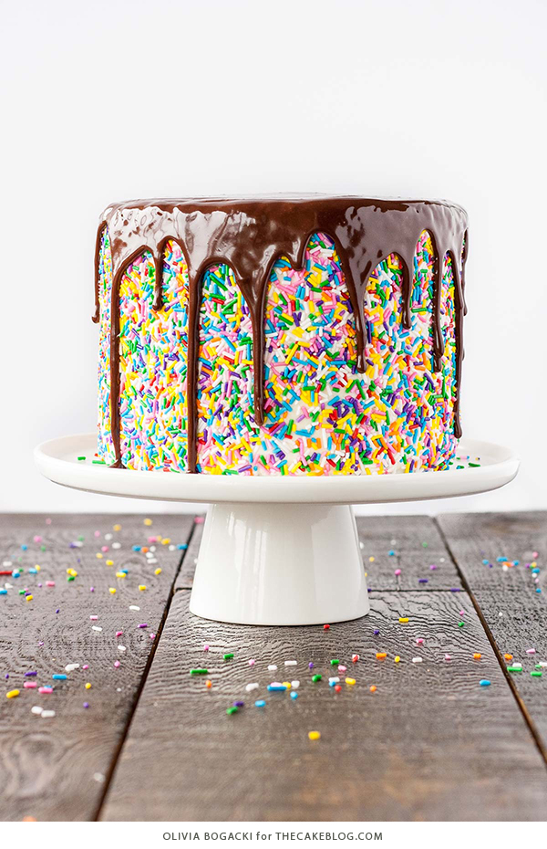 Chocolate Sprinkles Cake Decoration : 41 Easy Birthday Cake Decorating Ideas That Only Look ...