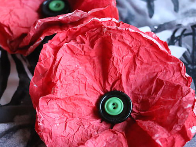 Painted Poppy Coffee Filters