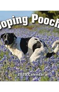 2020 Pooping Pooches Dog Calendar