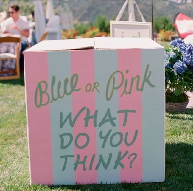 DIY Decorated Gender Reveal Box