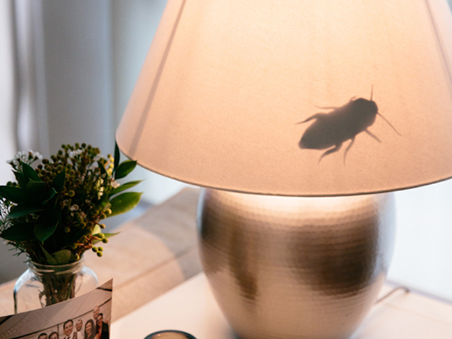 Creepy Insect Lamps